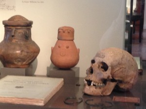 Skull & other objects in a case...